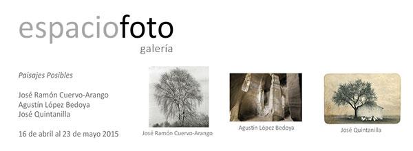 Paisajes posibles en la galería Espacio Foto de Madrid
